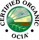 OCIA International.jpg